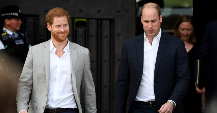 prince harry and prince William The Crown