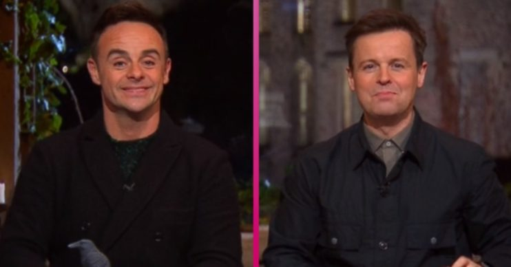 I'm A Celebrity Ant and Dec (4)