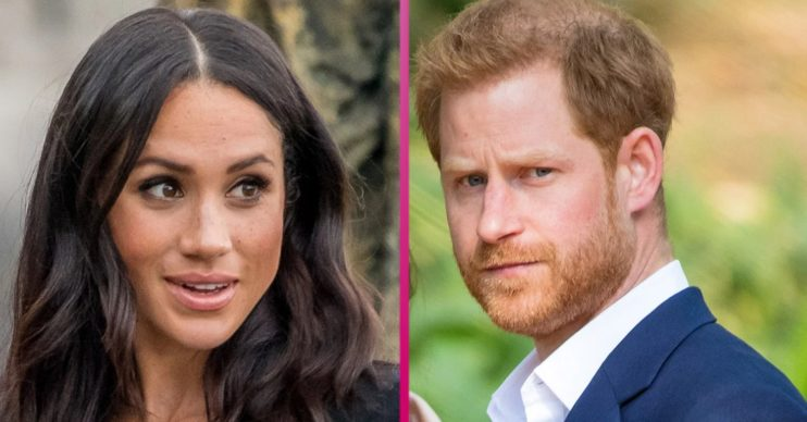 Meghan Markle and Prince Harry Netflix deal discussed