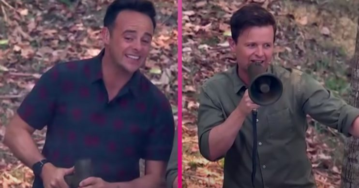 Ant and Dec preside over Celebrity Cyclone