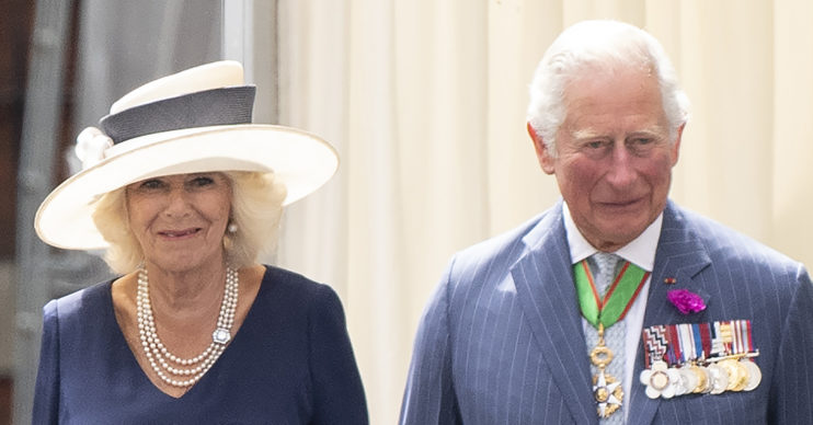 prince charles and camilla hedgehogs