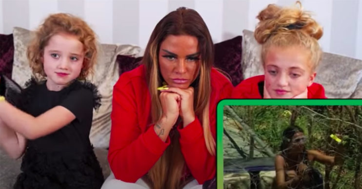 katie price on i'm a celebrity