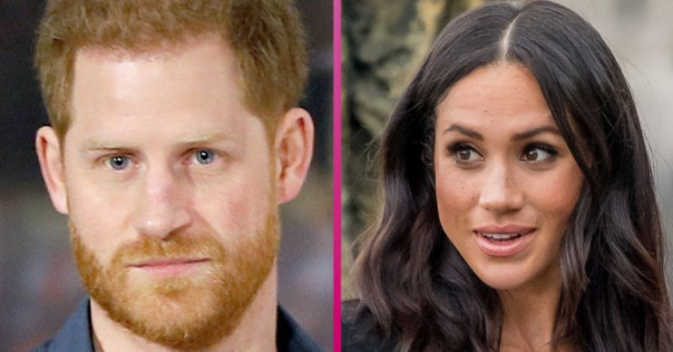 prince harry and meghan markle titles