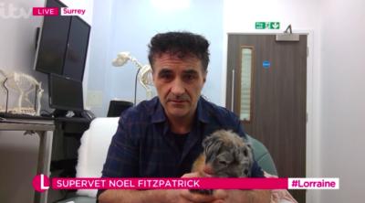 supervet on lorraine with his dog