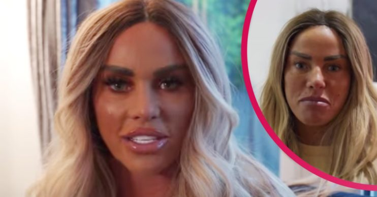 katie price pets petition ban