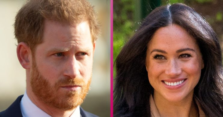 prince harry and meghan markle likely to write books next says expert