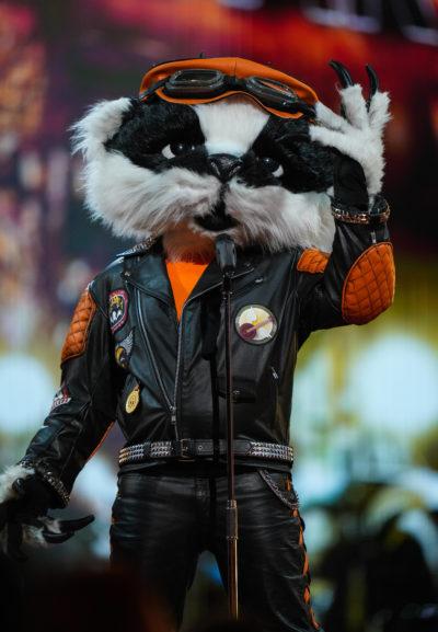 Badger the masked singer UK