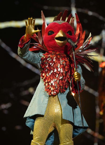 Who is robin the masked singer