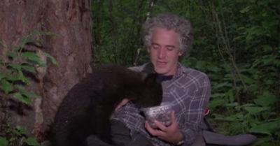 gordon buchanan feeds an abandoned baby bear