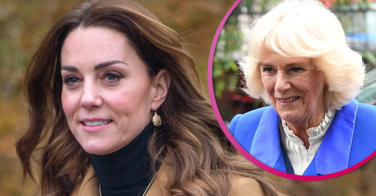 The Royal FAmily feared Kate Middleton would become second Camilla