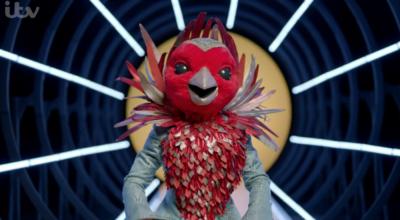 Westlife's Nicky Byrne left a huge hint that he is Robin on The Masked Singer