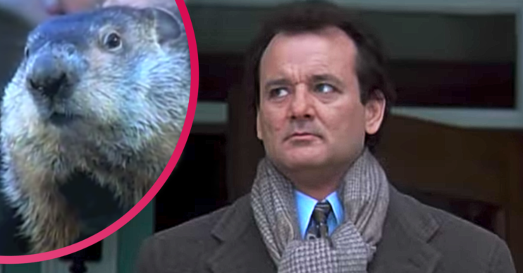 Groundhog Day what is it?