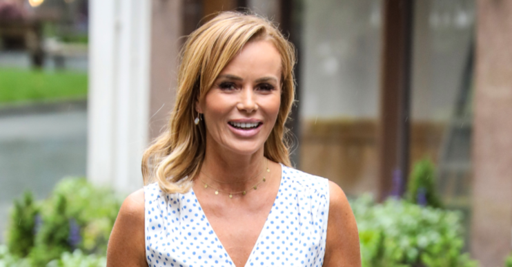 Amanda Holden introduced a love whip on Instagram