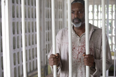 Wil Johnson as Emmet Peterson in Death in Paradise