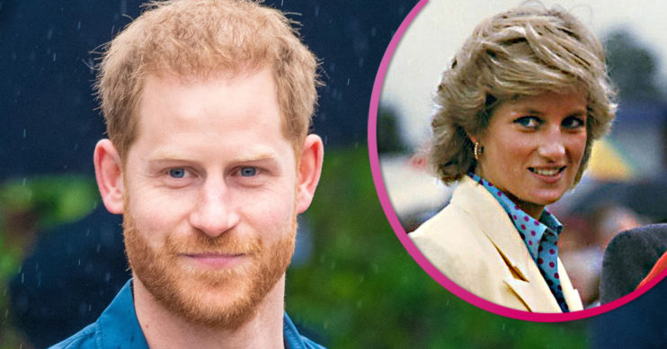 Prince Harry latest: Diana 'furious' over Megxit