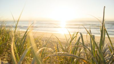 sunny beach in summer