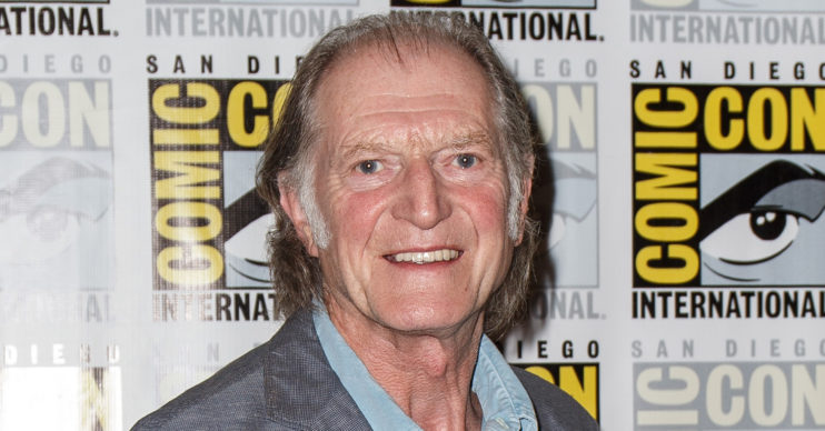 david bradley for the love of britain