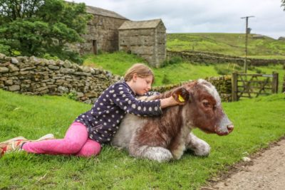 Violet with her pet cow - Ciara.