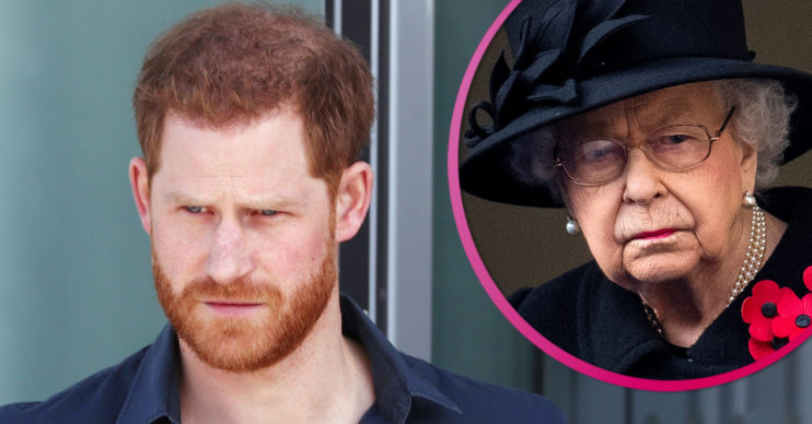 Prince Harry latest news