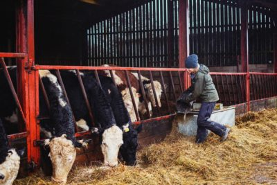 Presenter Kate Humble outside at farm feeding the cattle (Credit: Channel 5)