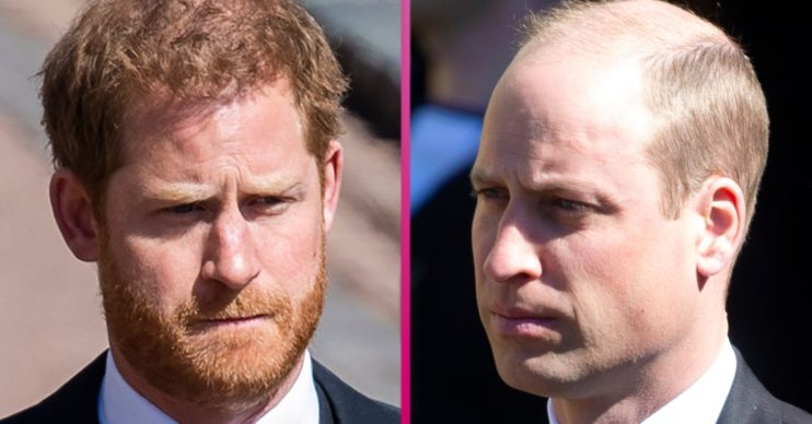 Prince Harry and Prince William funeral