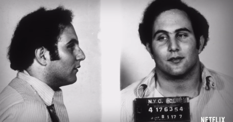 Sons of Sam on Netflix David Berkowitz