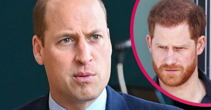 Prince William and Prince Harry racism claims