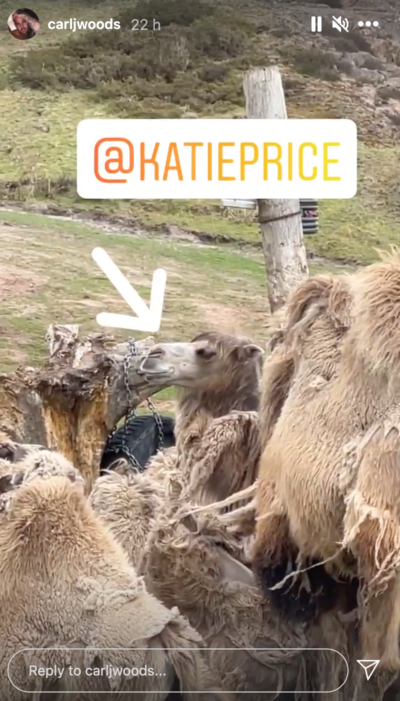 Katie Price mocked by Carl Woods for looking like a camel