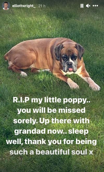 Elliott Wright dog death