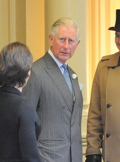 Prince Charles 'knocked to ground' by Oprah's interview with Harry