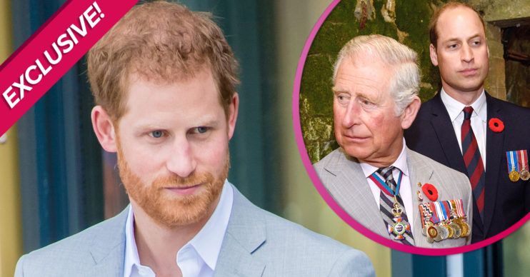 Prince Harry interview 'hurtful to Charles and William'