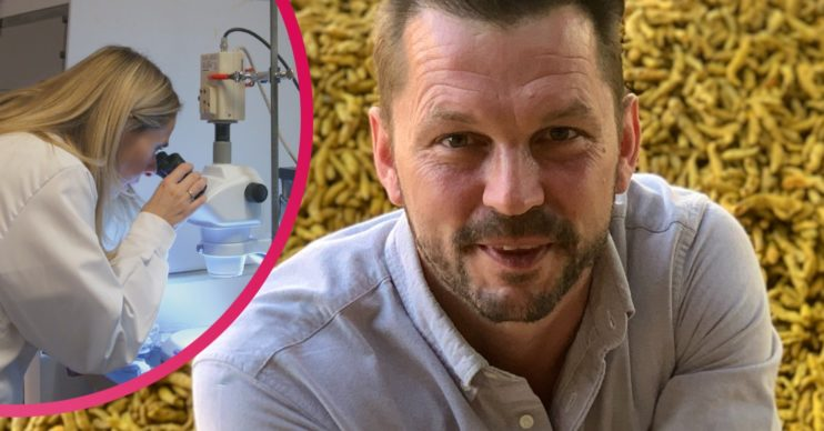 Food Unwrapped on Channel 4: What are microplastics and why are they harmful?