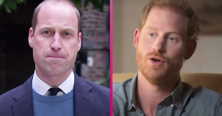 Prince William news: Duke of Cambridge 'concerned Prince Harry may go too far with royal family claims'
