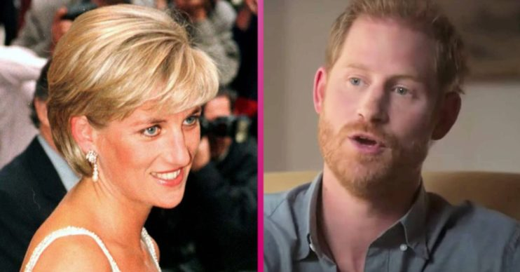 Prince Harry latest news: Duke of Sussex 'loses HRH title at Princess Diana exhibition'