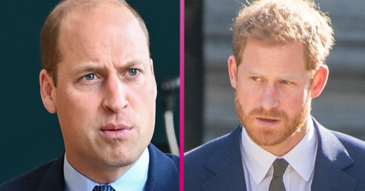 Prince William and Prince Harry looking serious
