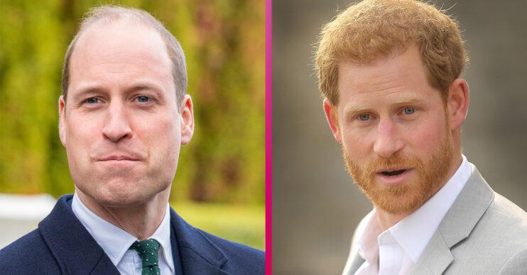 William and Harry latest