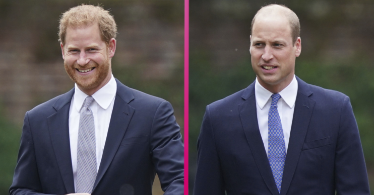 Prince Harry and Prince William posing in suits at the unveiling of the Diana statue