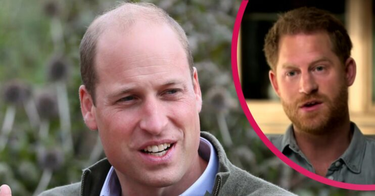 Prince William news: Royal staff 'planted stories about Prince Harry's mental health', biographer claims