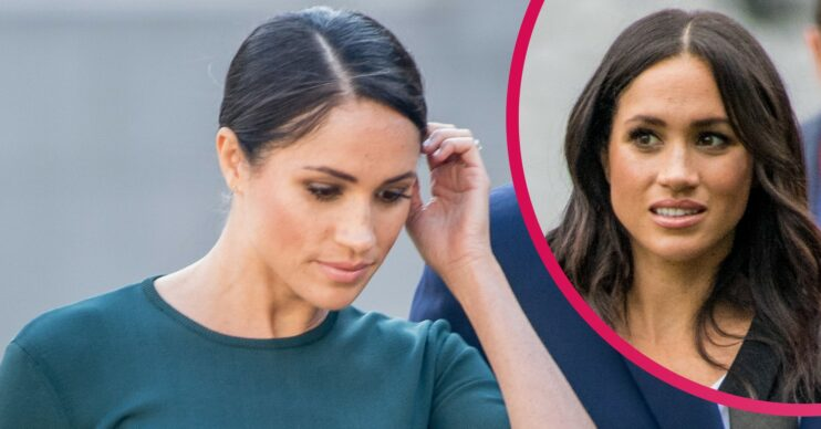 Meghan Markle 'humbled the royal family' and 'humiliated her critics', biographer claims