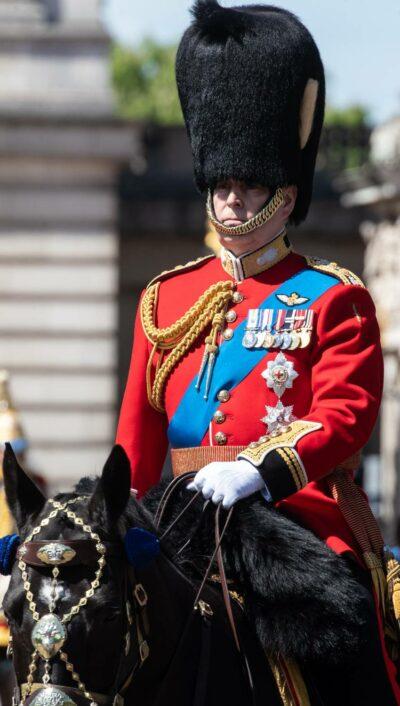 Prince Andrew in full ceremonial garb