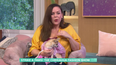 Chihuahua in a tutu on This Morning