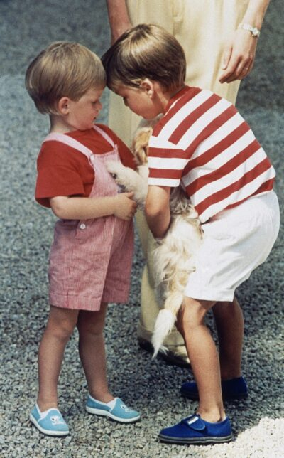 Young Prince Harry and Prince William cuddling puppy