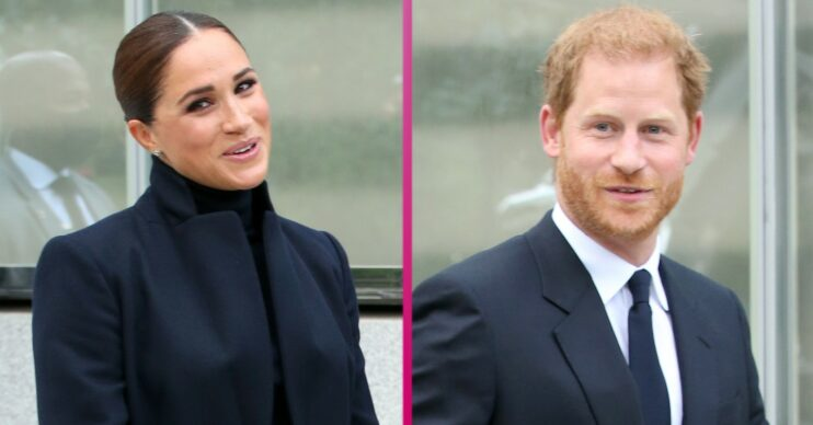 Meghan Markle and Prince Harry get snapped